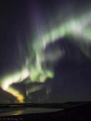 Aurora Sept 1 2016 PENF (9 of 5)